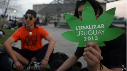 Se projeto for de fato aprovado, Estado uruguaio controlará produção e venda da maconha